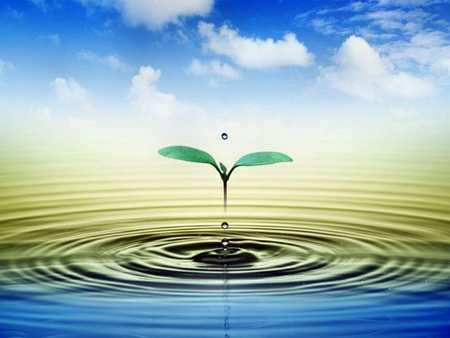 hiện đại hóa, công nghiệp hóa, Ô nhiễm không khí, Ô nhiễm môi trường nước, Ô nhiễm đất, môi trường